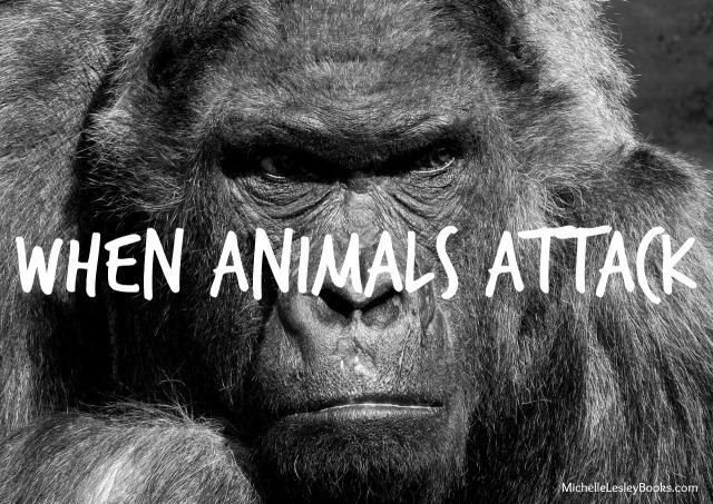 animals-attack