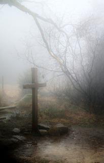 fog-258224_640