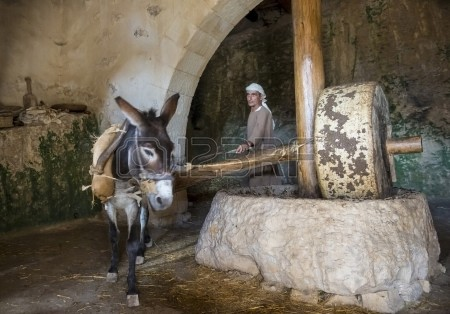 Recreation of a millstone used for pressing olives in Nazareth, Israel.