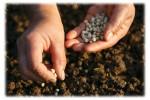 comparing-evangelism-to-farming-300x200