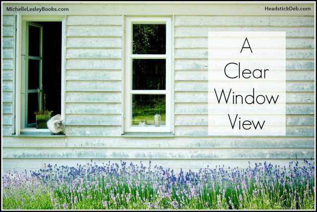 debbielynne kespert clear window