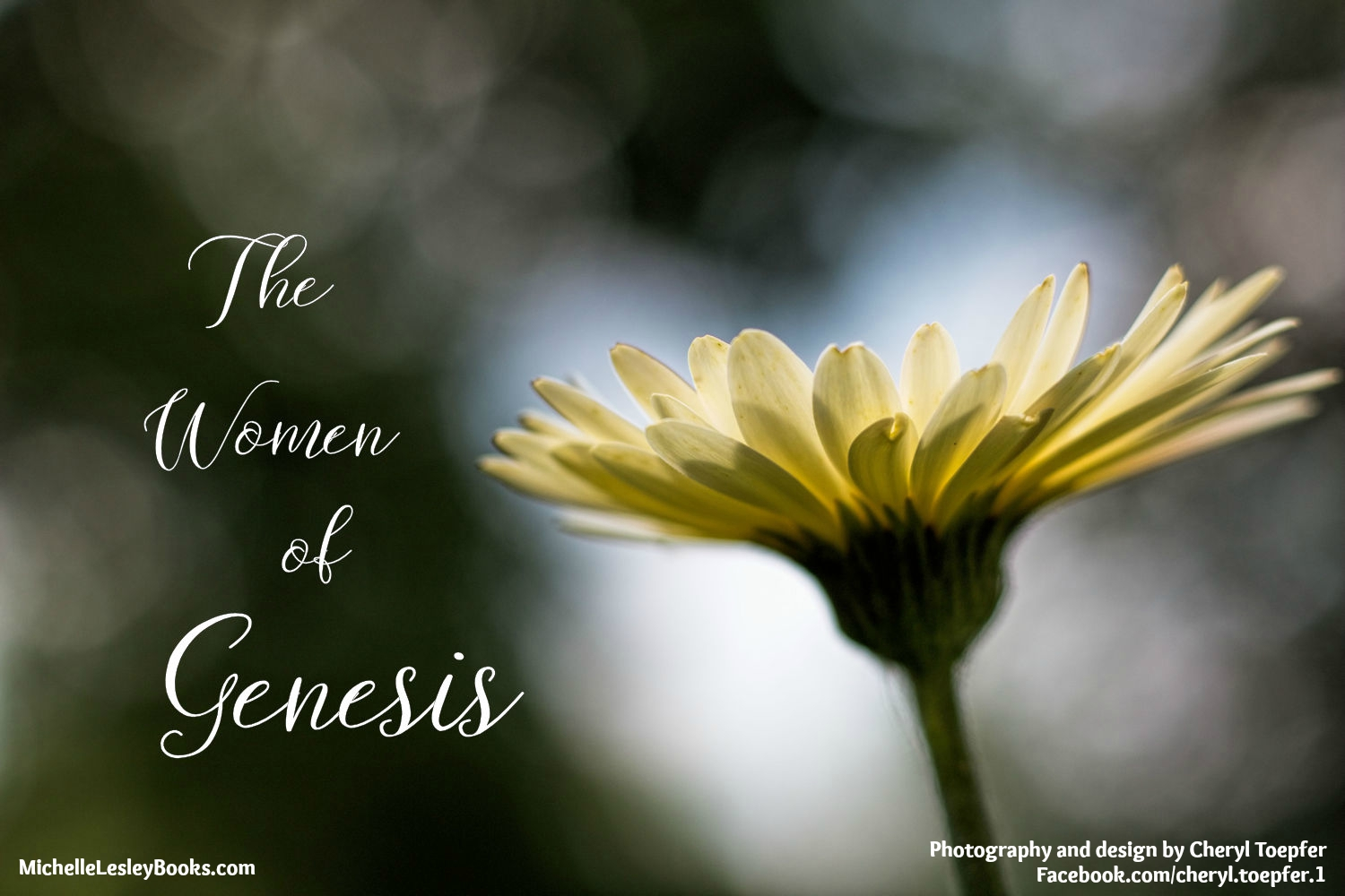 an analysis of the intimidating female in genesis The male and female are both comprehended in the word man, as is expressed, genesis 1:27, together with their posterity over the cattle by which he understands either, 1.